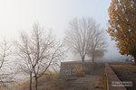 Утренний туман на набережной