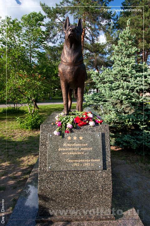 Памятник собакам-истребителям танков фото