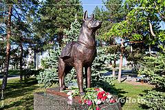 памятник собакам подрывникам фото