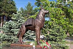 памятник собакам истребителям танков фото