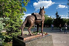 памятник военным собакам фото