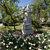 Памятник Маргарите Агашиной - панорама